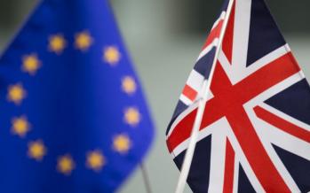 Euro to Weaken as Netherlands Hint at EU Exit