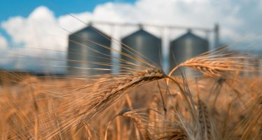 Overstock's Subsidiary Buys Stake In GrainChain