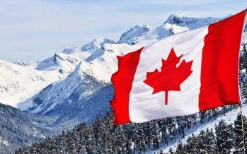 Canadian Dollar Up Despite Poor Retail Sales Data