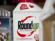 Bayer Nearing a Deal on Weed Killer Lawsuits