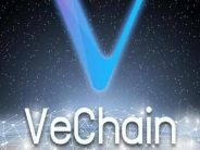 VeChain Unveils Blockchain Tool for Food Sector Management